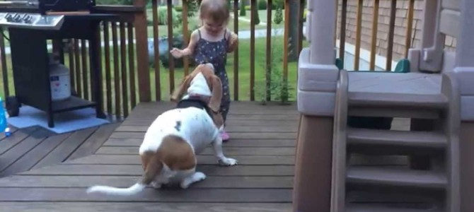 TGIF: Watch A Little Girl And A Dog Frolicking Around